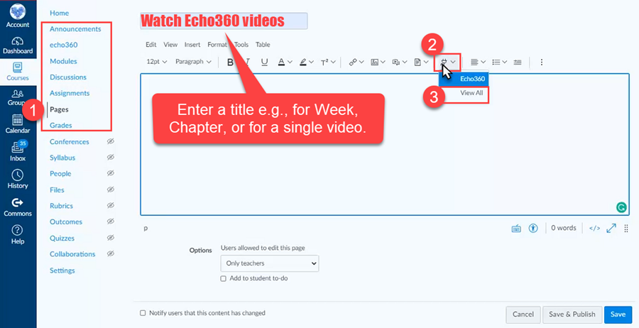 An image: Echo360 Embed button plug-shaped icon (Apps button) inside of the Rich Content Editor