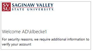 SVSU - Verify your account